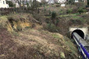 Eboulement de talus - Sèvres-Ville d'Avray